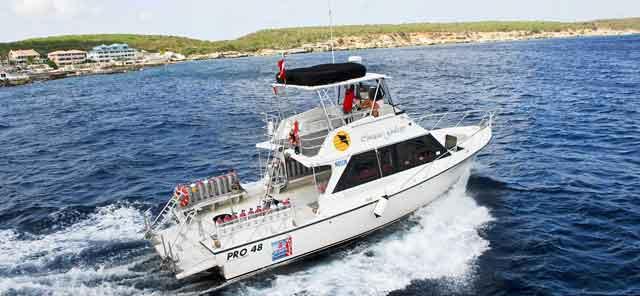 Curacao-Galaxy-sm
